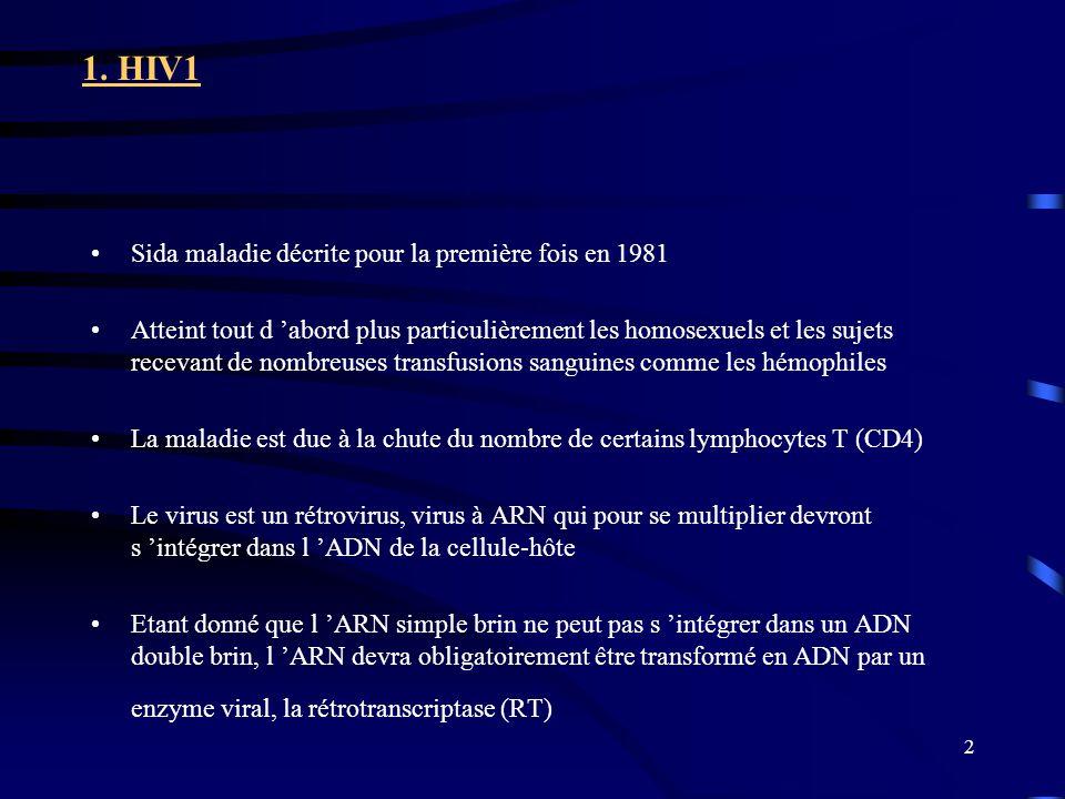 2 1. HIV1 Sida maladie décrite pour la première fois en 1981 Atteint tout d abord plus particulièrement les homosexuels et les sujets recevant de nomb