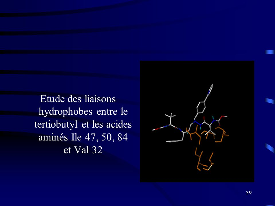 39 Etude des liaisons hydrophobes entre le tertiobutyl et les acides aminés Ile 47, 50, 84 et Val 32