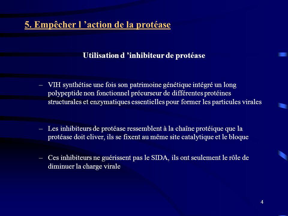 4 5. Empêcher l action de la protéase Utilisation d inhibiteur de protéase –VIH synthétise une fois son patrimoine génétique intégré un long polypepti