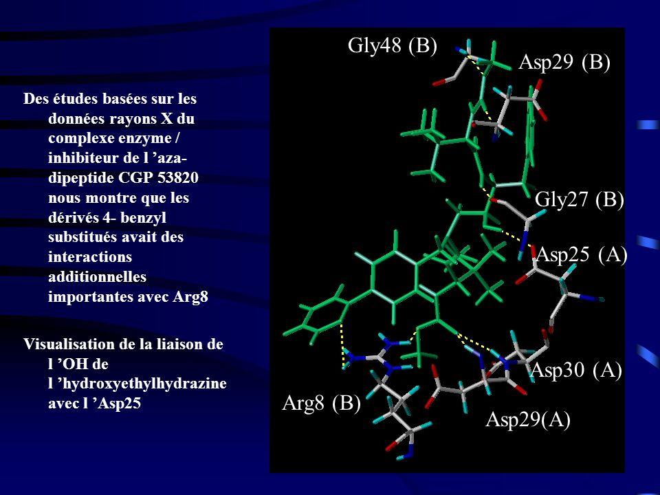 51 Des études basées sur les données rayons X du complexe enzyme / inhibiteur de l aza- dipeptide CGP 53820 nous montre que les dérivés 4- benzyl substitués avait des interactions additionnelles importantes avec Arg8 Visualisation de la liaison de l OH de l hydroxyethylhydrazine avec l Asp25 Gly48 (B) Asp29 (B) Gly27 (B) Asp25 (A) Asp30 (A) Asp29(A) Arg8 (B)
