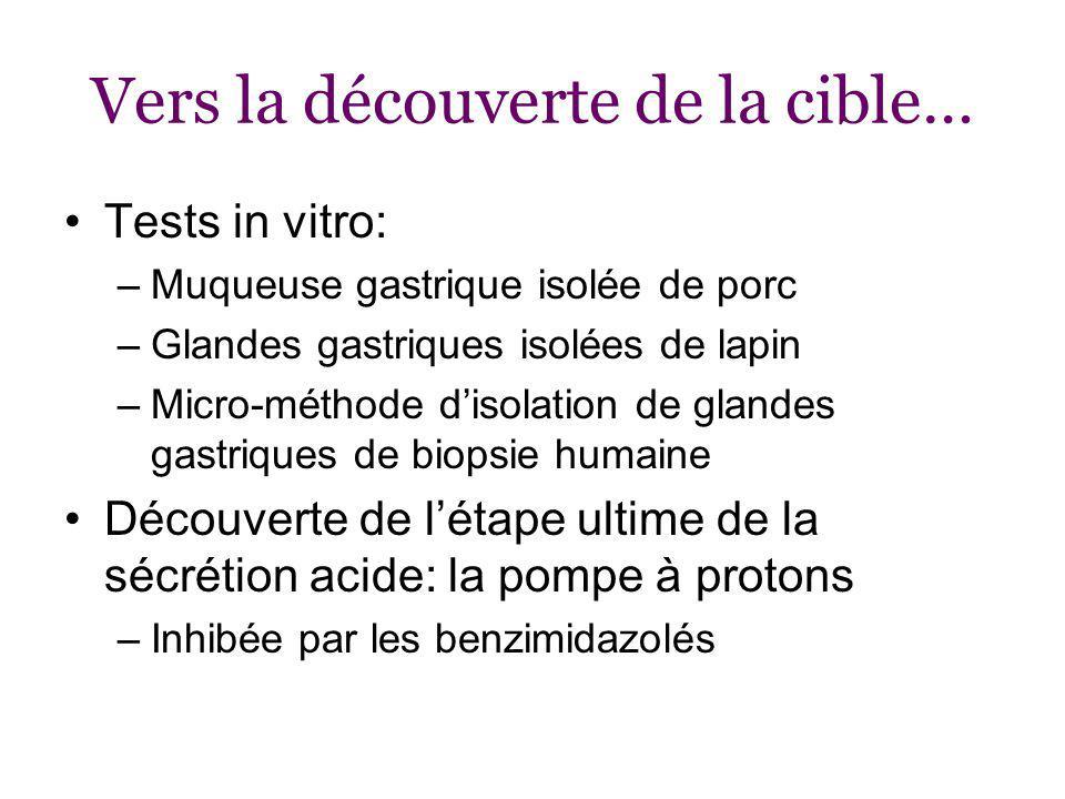 Vers la découverte de la cible… Tests in vitro: –Muqueuse gastrique isolée de porc –Glandes gastriques isolées de lapin –Micro-méthode disolation de glandes gastriques de biopsie humaine Découverte de létape ultime de la sécrétion acide: la pompe à protons –Inhibée par les benzimidazolés