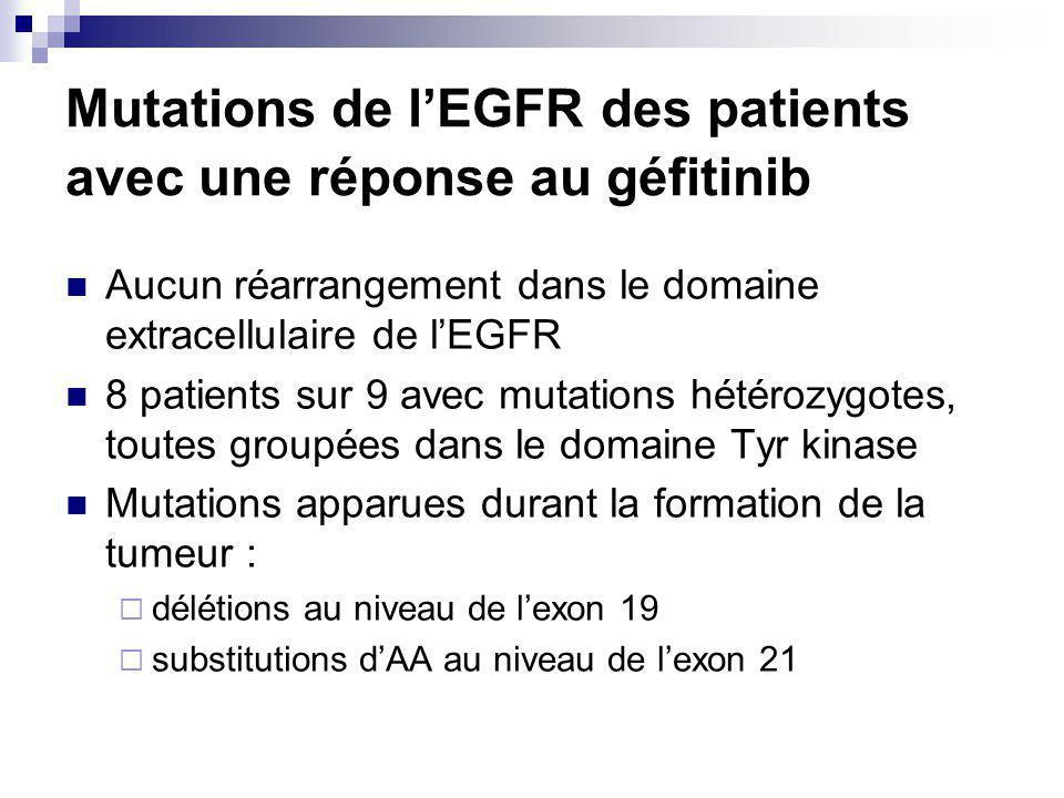 Mutations de lEGFR des patients avec une réponse au géfitinib Aucun réarrangement dans le domaine extracellulaire de lEGFR 8 patients sur 9 avec mutations hétérozygotes, toutes groupées dans le domaine Tyr kinase Mutations apparues durant la formation de la tumeur : délétions au niveau de lexon 19 substitutions dAA au niveau de lexon 21