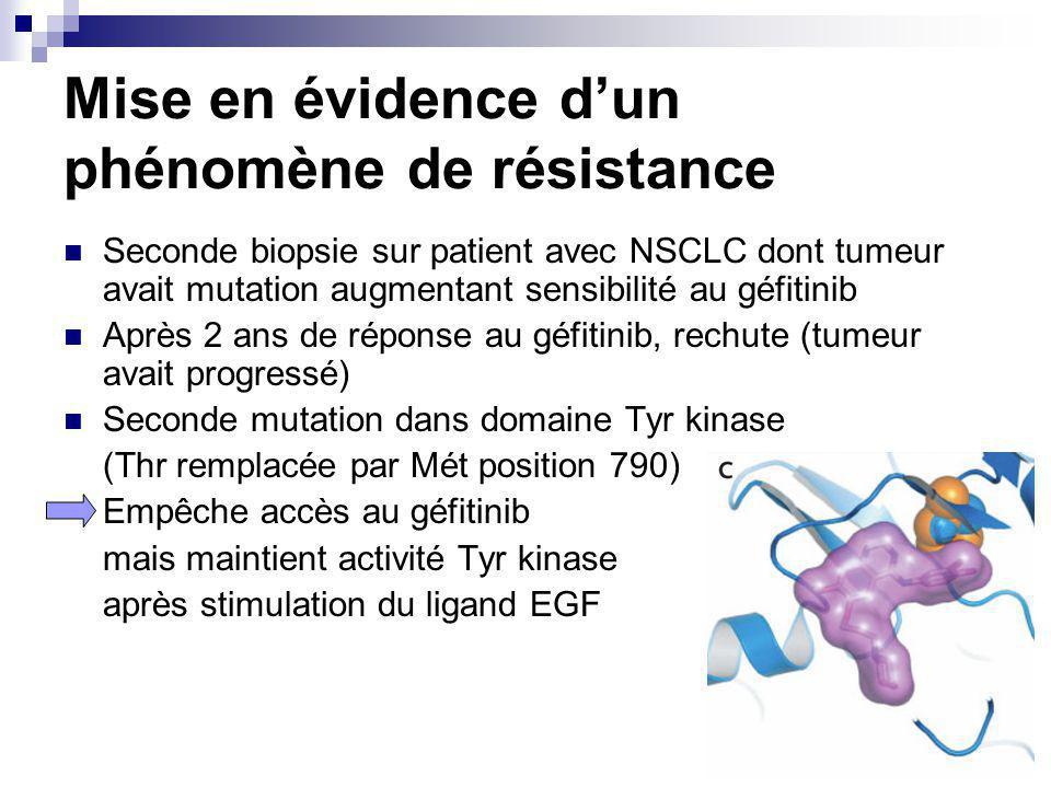 Mise en évidence dun phénomène de résistance Seconde biopsie sur patient avec NSCLC dont tumeur avait mutation augmentant sensibilité au géfitinib Après 2 ans de réponse au géfitinib, rechute (tumeur avait progressé) Seconde mutation dans domaine Tyr kinase (Thr remplacée par Mét position 790) Empêche accès au géfitinib mais maintient activité Tyr kinase après stimulation du ligand EGF
