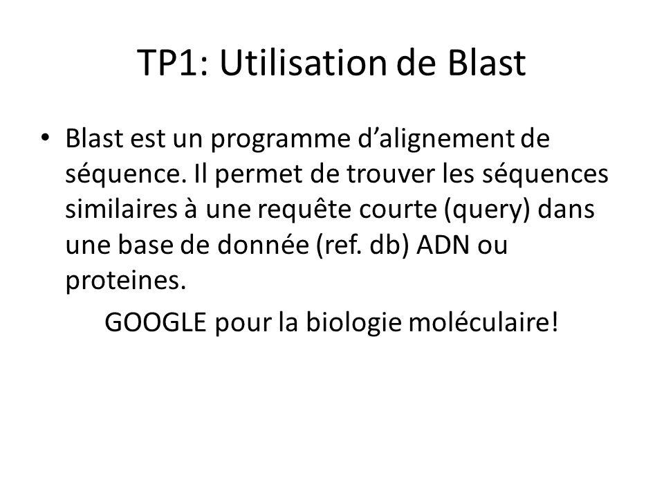 TP1: Utilisation de Blast Blast est un programme dalignement de séquence. Il permet de trouver les séquences similaires à une requête courte (query) d