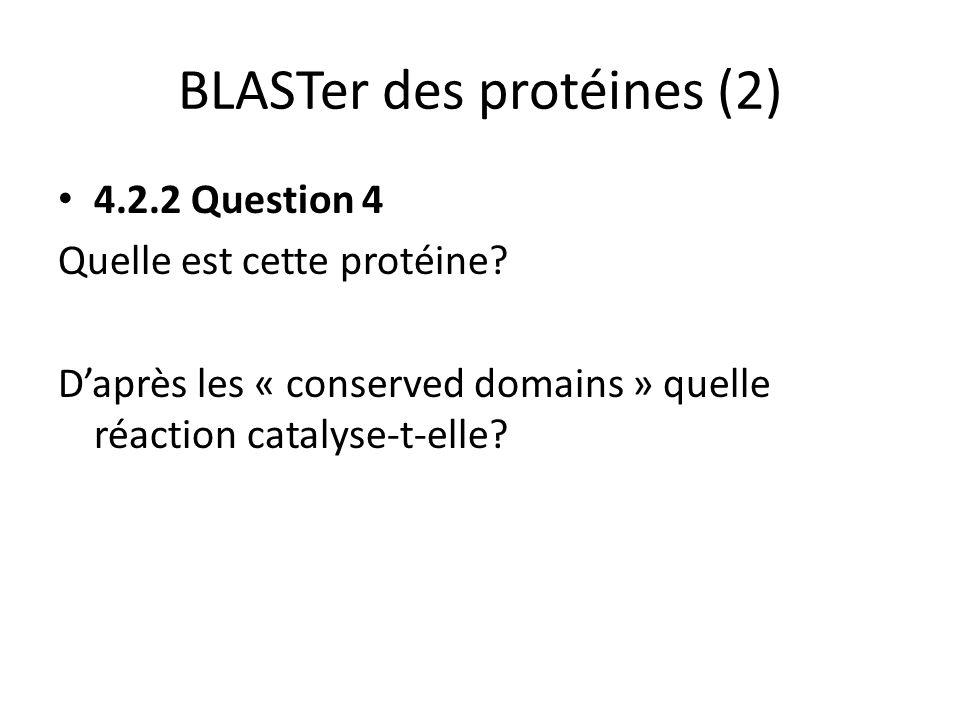 BLASTer des protéines (2) 4.2.2 Question 4 Quelle est cette protéine? Daprès les « conserved domains » quelle réaction catalyse-t-elle?