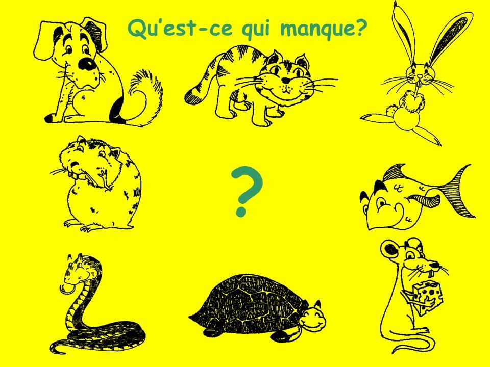 Les animaux (12) Quest-ce qui manque? ?