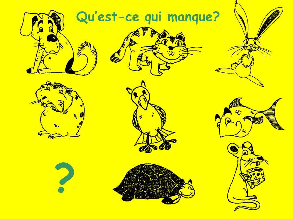 Les animaux (13) Quest-ce qui manque? ?