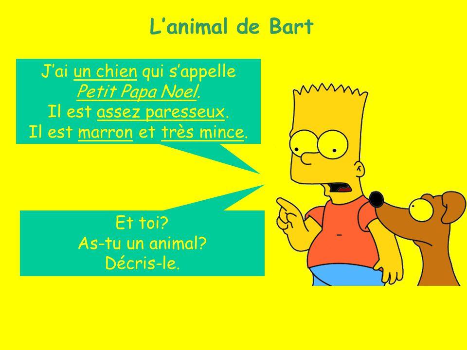 Les animaux (16) Lanimal de Bart Jai un chien qui sappelle Petit Papa Noel. Il est assez paresseux. Il est marron et très mince. Et toi? As-tu un anim