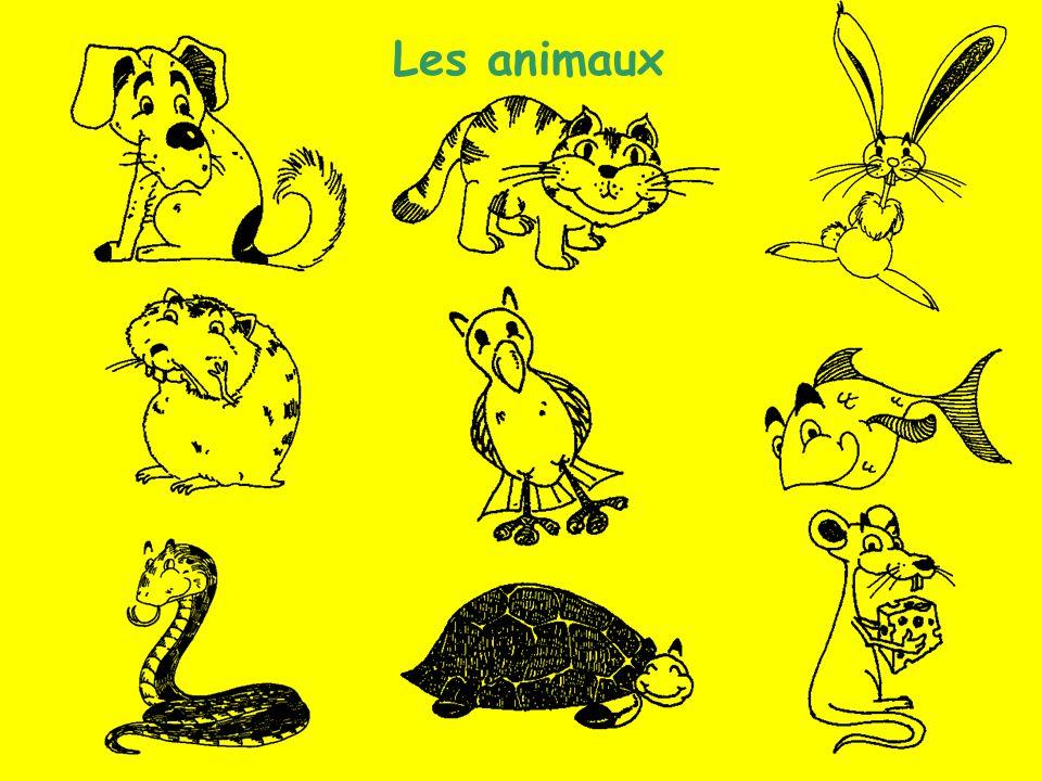 Les animaux (2) Les animaux