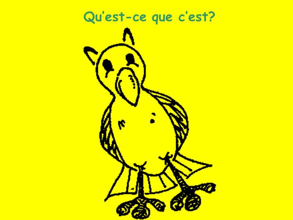 Les animaux (6) Quest-ce que cest?