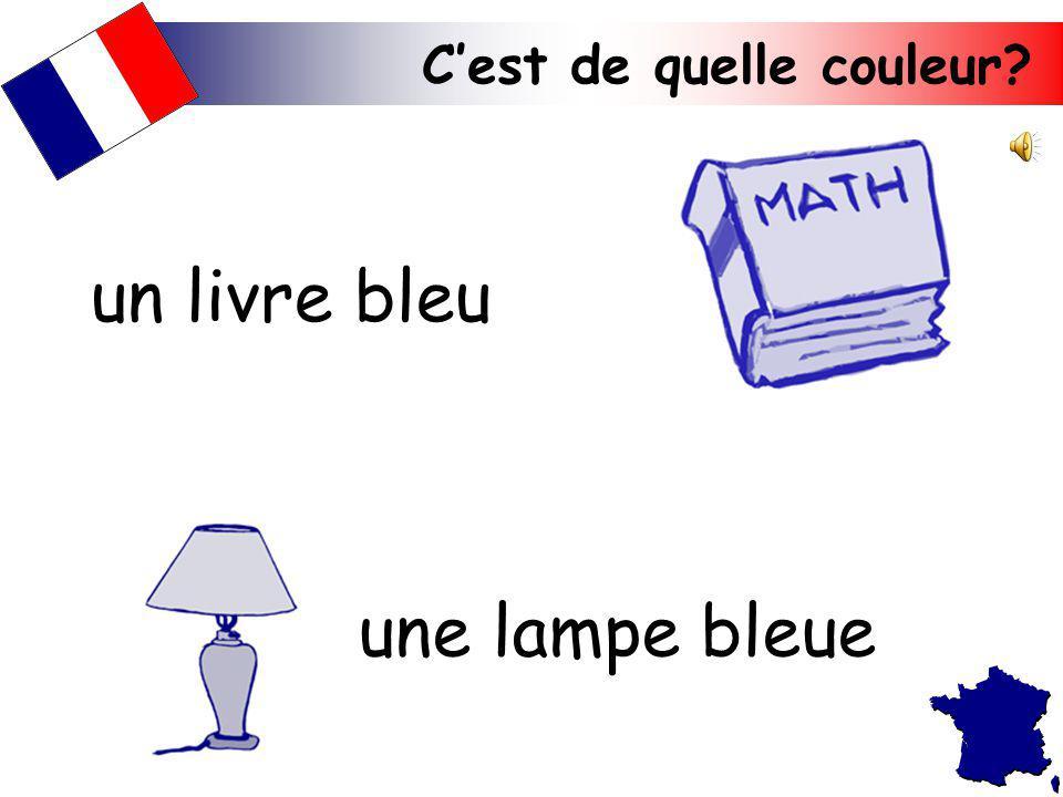 Cest de quelle couleur? une lampe bleue un livre bleu