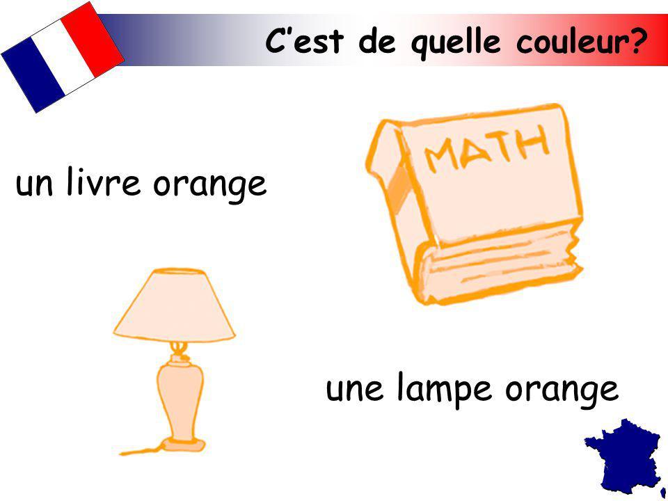 Cest de quelle couleur? une lampe orange un livre orange