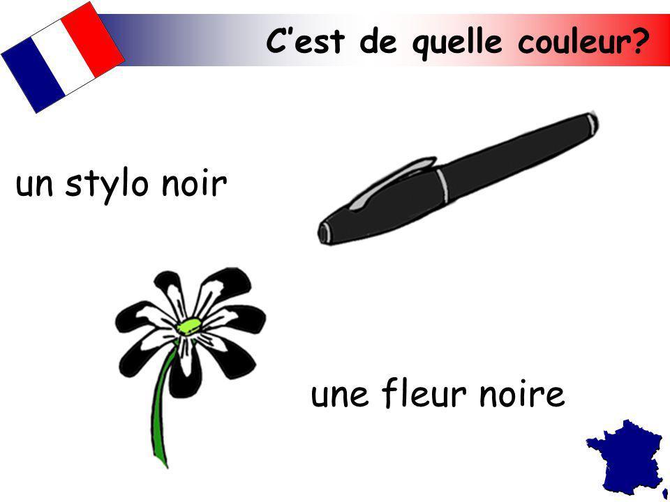 Cest de quelle couleur? une fleur noire un stylo noir