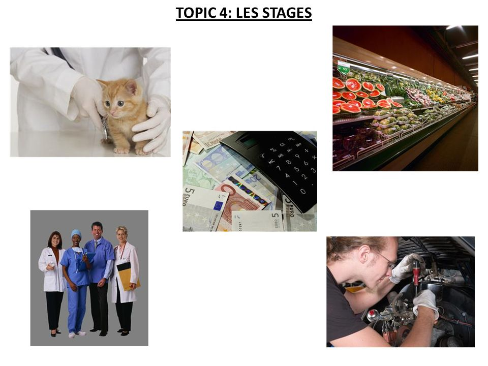TOPIC 4: LES STAGES