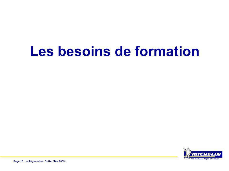 Page 18 / collègemétier / Buffet / Mai 2005 / Les besoins de formation
