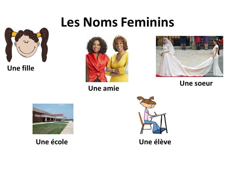 Les Noms Feminins Une amie Une fille Une écoleUne élève Une soeur