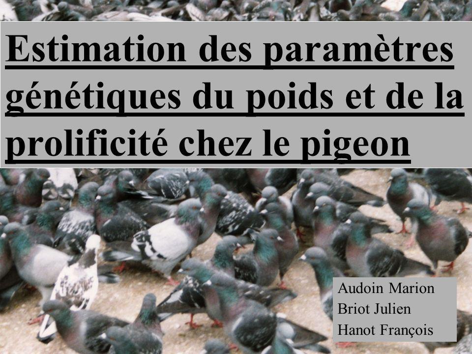 Audoin Marion Briot Julien Hanot François Estimation des paramètres génétiques du poids et de la prolificité chez le pigeon