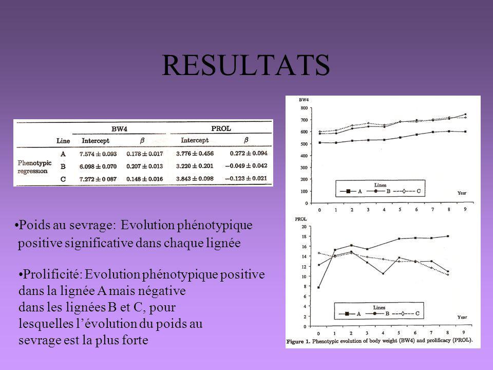 RESULTATS Poids au sevrage: Evolution phénotypique positive significative dans chaque lignée Prolificité: Evolution phénotypique positive dans la lign