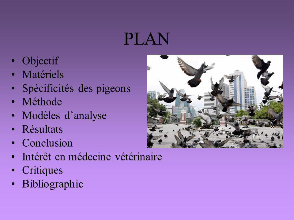 PLAN Objectif Matériels Spécificités des pigeons Méthode Modèles danalyse Résultats Conclusion Intérêt en médecine vétérinaire Critiques Bibliographie