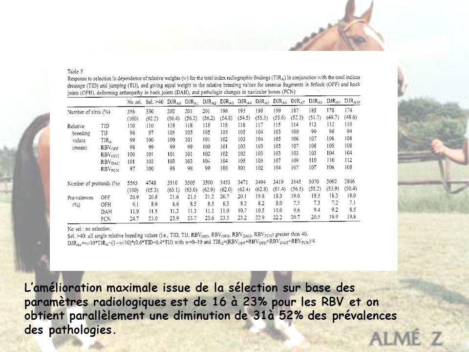 Lamélioration maximale issue de la sélection sur base des paramètres radiologiques est de 16 à 23% pour les RBV et on obtient parallèlement une diminu