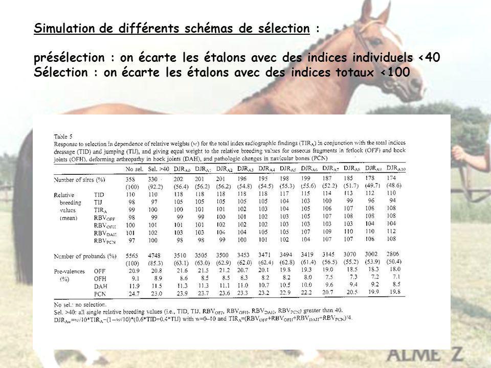 Simulation de différents schémas de sélection : présélection : on écarte les étalons avec des indices individuels <40 Sélection : on écarte les étalon