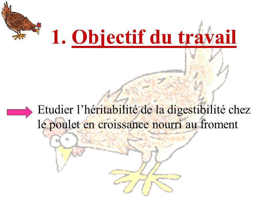 1. Objectif du travail Etudier lhéritabilité de la digestibilité chez le poulet en croissance nourri au froment