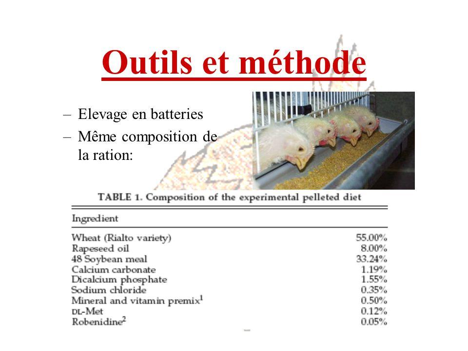 Outils et méthode –Elevage en batteries –Même composition de la ration: