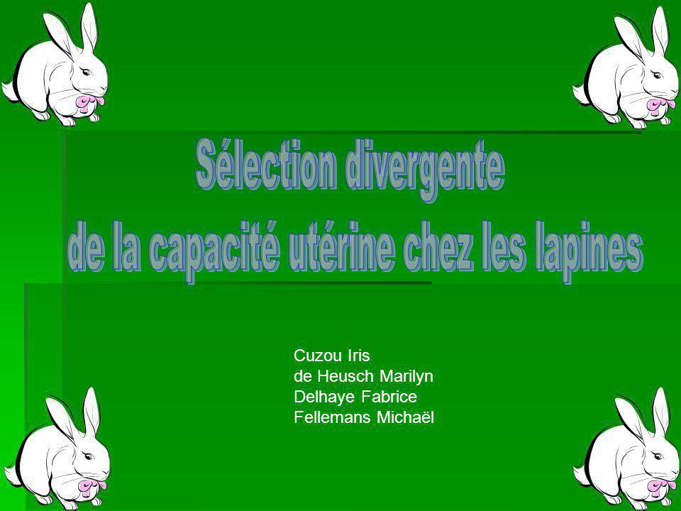 Cuzou Iris de Heusch Marilyn Delhaye Fabrice Fellemans Michaël