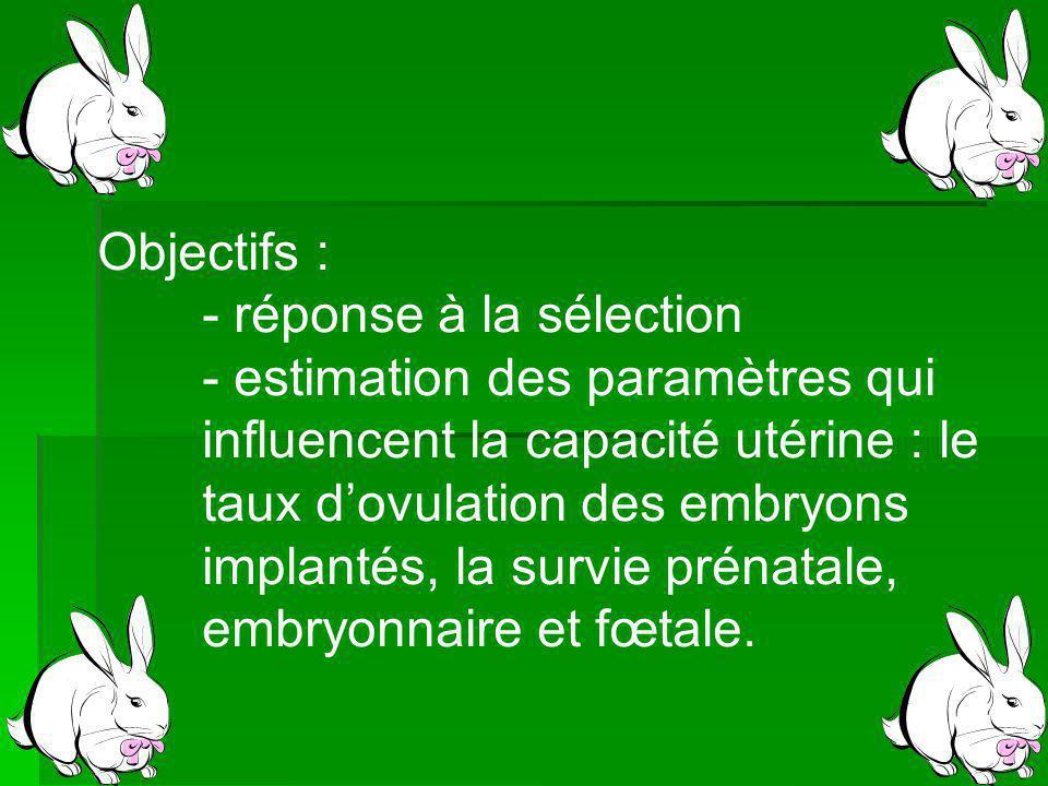 Objectifs : - réponse à la sélection - estimation des paramètres qui influencent la capacité utérine : le taux dovulation des embryons implantés, la survie prénatale, embryonnaire et fœtale.