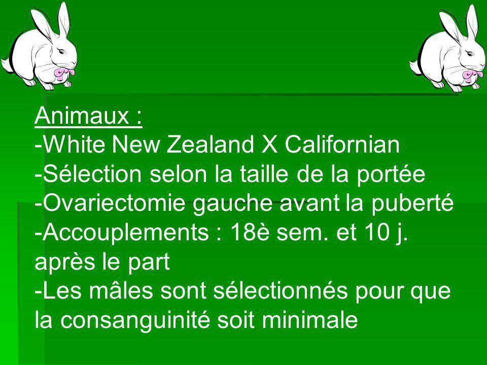 Animaux : -White New Zealand X Californian -Sélection selon la taille de la portée -Ovariectomie gauche avant la puberté -Accouplements : 18è sem.