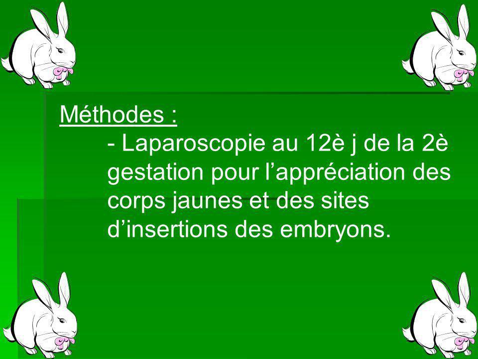 Méthodes : - Laparoscopie au 12è j de la 2è gestation pour lappréciation des corps jaunes et des sites dinsertions des embryons.