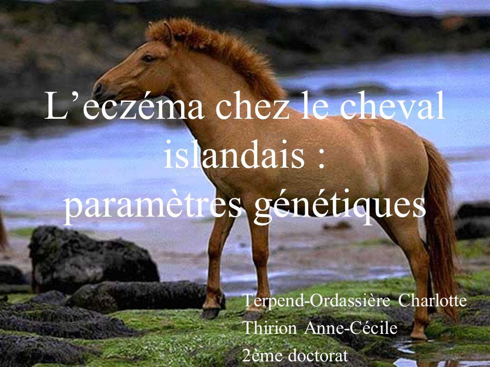 Leczéma chez le cheval islandais : paramètres génétiques Terpend-Ordassière Charlotte Thirion Anne-Cécile 2ème doctorat