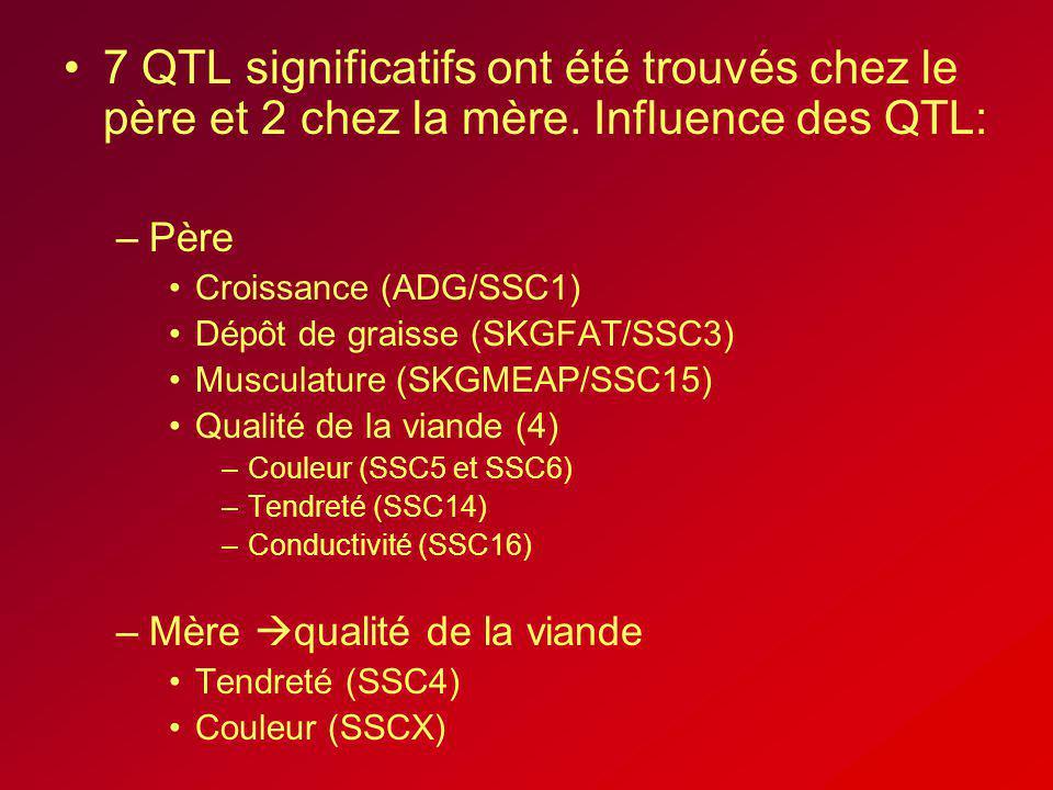 7 QTL significatifs ont été trouvés chez le père et 2 chez la mère. Influence des QTL: –Père Croissance (ADG/SSC1) Dépôt de graisse (SKGFAT/SSC3) Musc