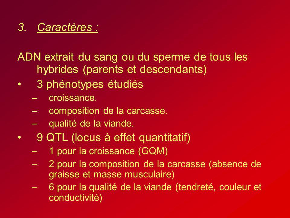 3.Caractères : ADN extrait du sang ou du sperme de tous les hybrides (parents et descendants) 3 phénotypes étudiés –croissance. –composition de la car