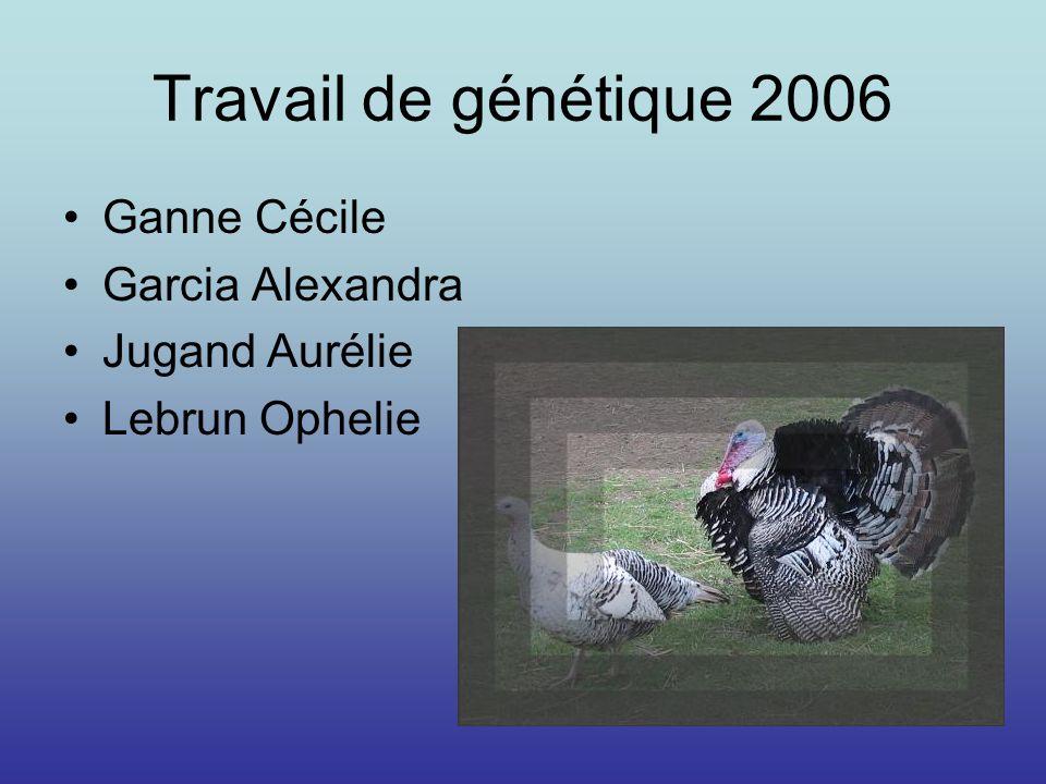 Travail de génétique 2006 Ganne Cécile Garcia Alexandra Jugand Aurélie Lebrun Ophelie