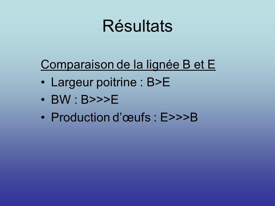 Résultats Comparaison de la lignée B et E Largeur poitrine : B>E BW : B>>>E Production dœufs : E>>>B