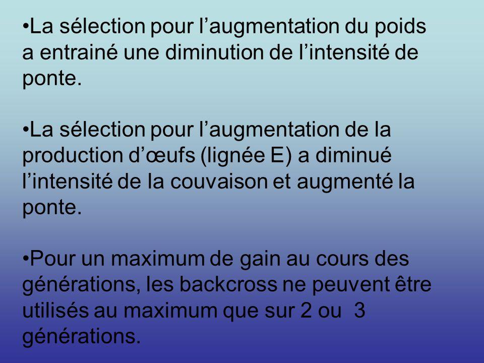 La sélection pour laugmentation du poids a entrainé une diminution de lintensité de ponte. La sélection pour laugmentation de la production dœufs (lig