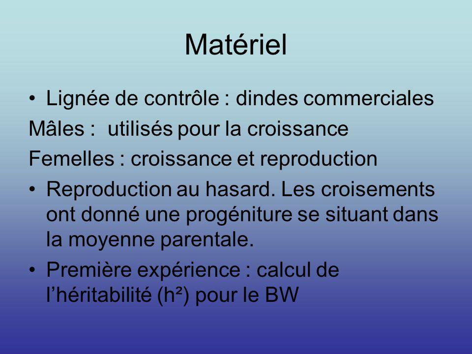 Matériel Lignée de contrôle : dindes commerciales Mâles : utilisés pour la croissance Femelles : croissance et reproduction Reproduction au hasard. Le