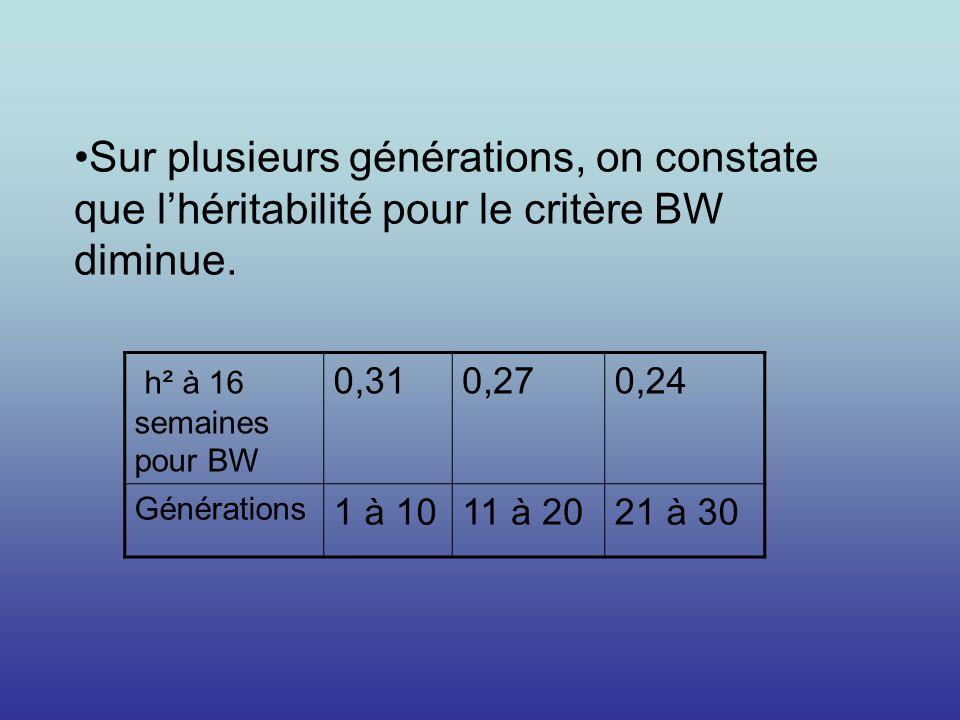 h² à 16 semaines pour BW 0,310,270,24 Générations 1 à 1011 à 2021 à 30 Sur plusieurs générations, on constate que lhéritabilité pour le critère BW dim