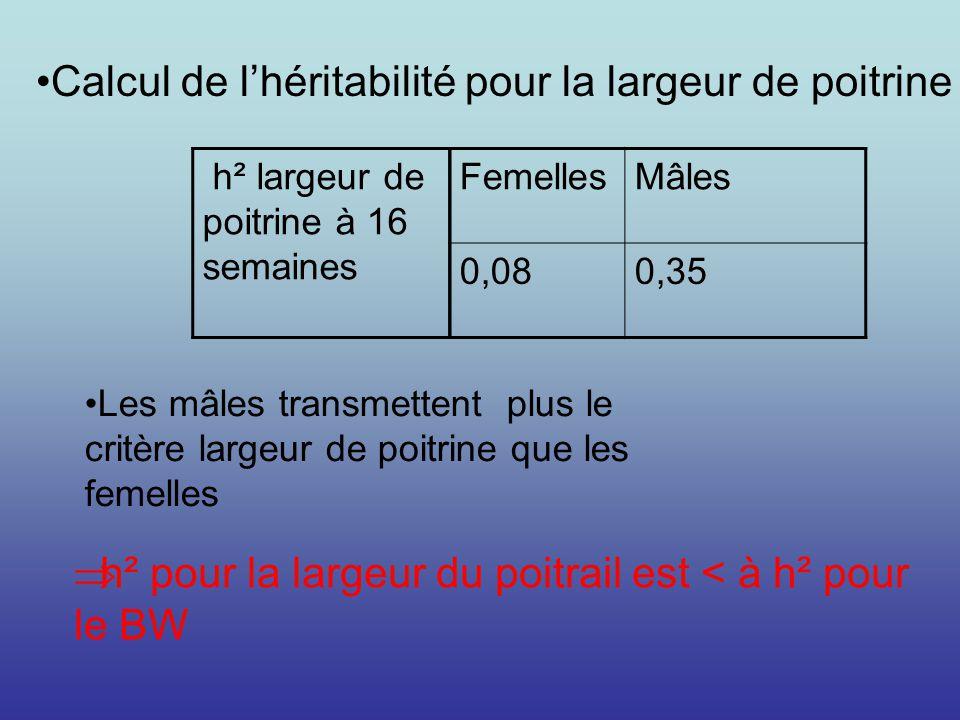 h² pour la largeur du poitrail est < à h² pour le BW FemellesMâles 0,080,35 h² largeur de poitrine à 16 semaines Calcul de lhéritabilité pour la large