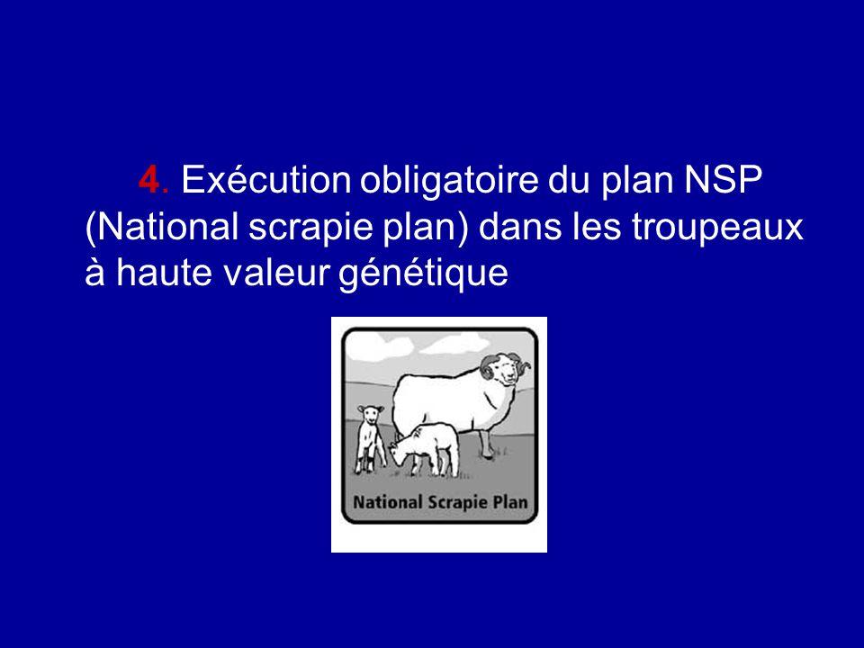 4. Exécution obligatoire du plan NSP (National scrapie plan) dans les troupeaux à haute valeur génétique