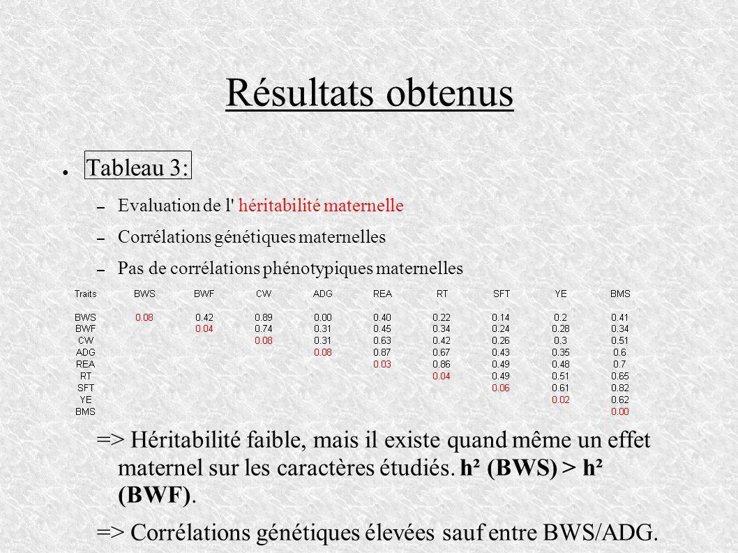 Résultats obtenus Tableau 3: – Evaluation de l' héritabilité maternelle – Corrélations génétiques maternelles – Pas de corrélations phénotypiques mate