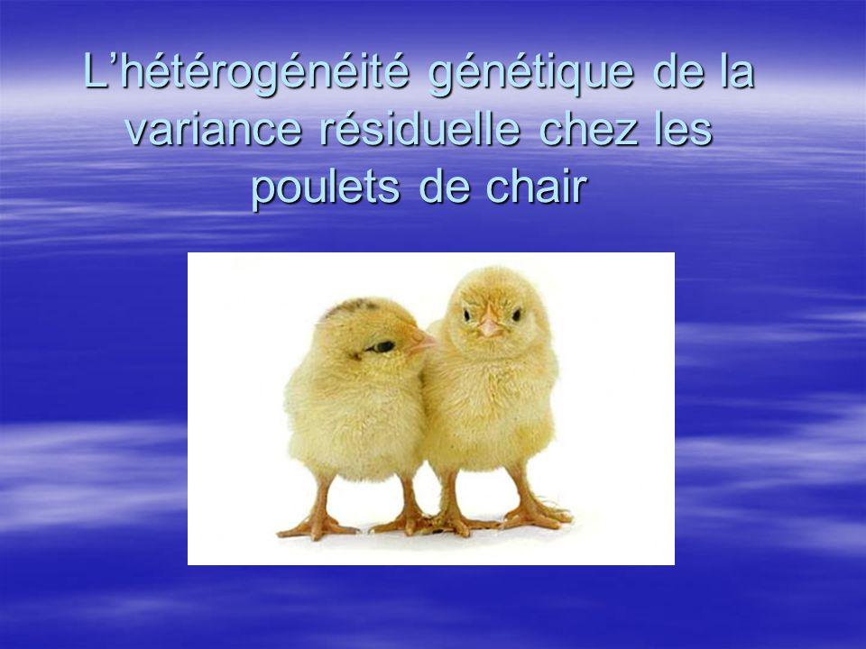 Lhétérogénéité génétique de la variance résiduelle chez les poulets de chair