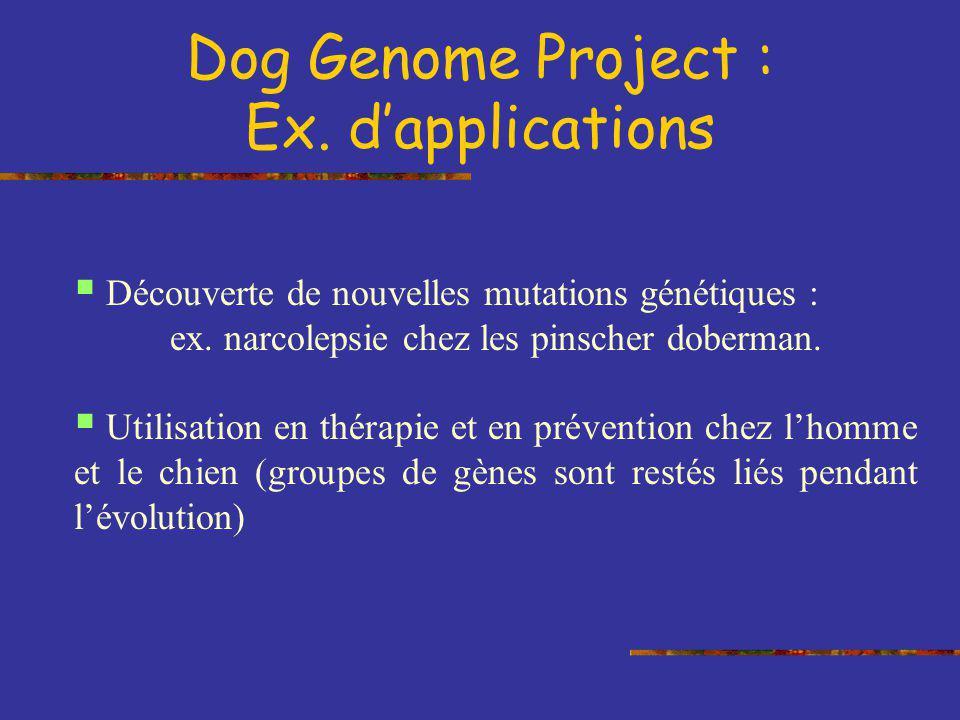 Découverte de nouvelles mutations génétiques : ex. narcolepsie chez les pinscher doberman. Utilisation en thérapie et en prévention chez lhomme et le