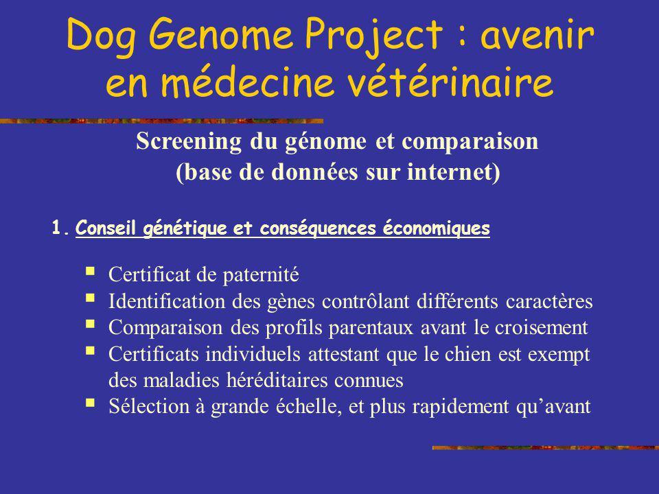Screening du génome et comparaison (base de données sur internet) 1.Conseil génétique et conséquences économiques Certificat de paternité Identificati