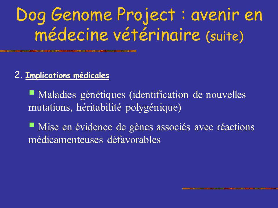Dog Genome Project : avenir en médecine vétérinaire (suite) 2. Implications médicales Maladies génétiques (identification de nouvelles mutations, héri