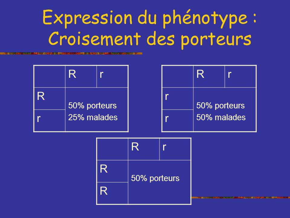 Expression du phénotype : Croisement des porteurs Rr R 50% porteurs 25% malades r Rr R 50% porteurs R Rr r 50% malades r