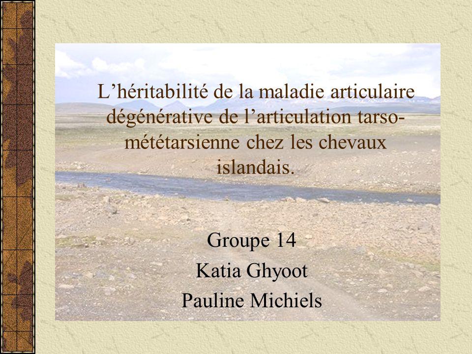 Lhéritabilité de la maladie articulaire dégénérative de larticulation tarso- mététarsienne chez les chevaux islandais.