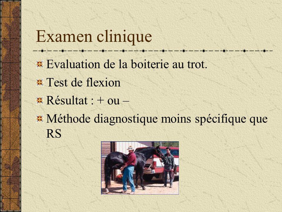 Examen clinique Evaluation de la boiterie au trot.