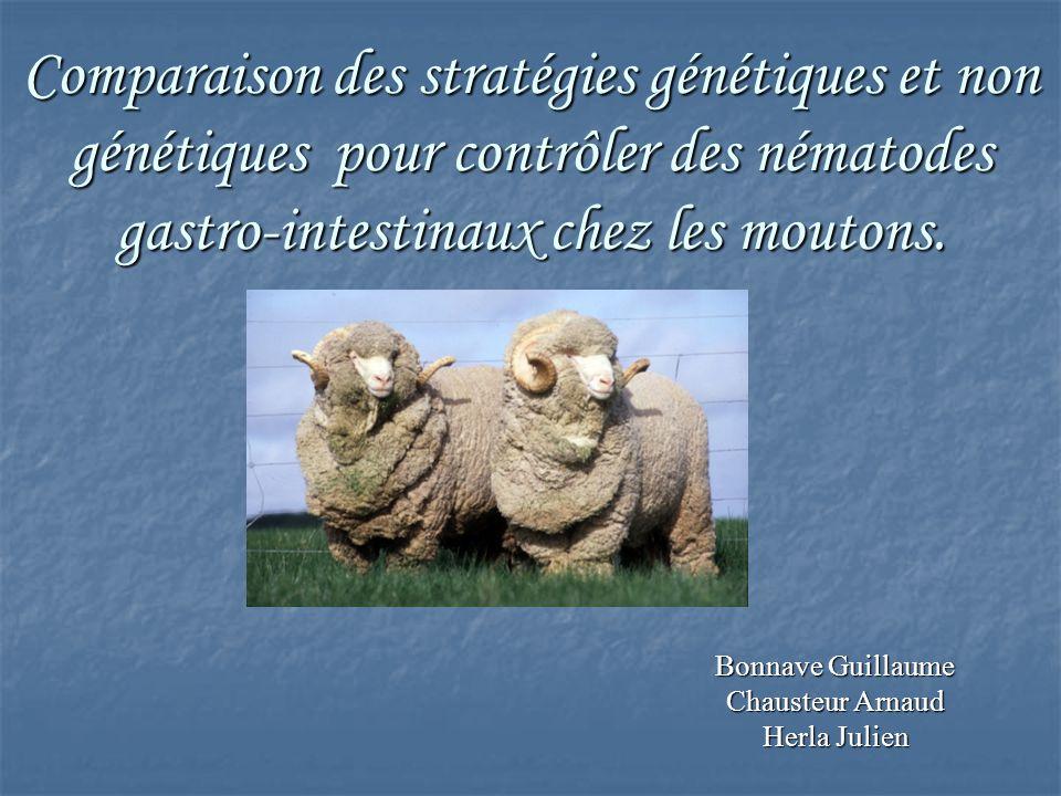 Comparaison des stratégies génétiques et non génétiques pour contrôler des nématodes gastro-intestinaux chez les moutons. Bonnave Guillaume Chausteur